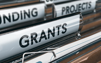 Are Government Grants a Right Funding Mechanism?